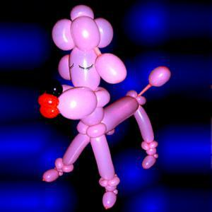 Pink poodle balloon model