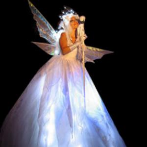 illuminated fairy costume