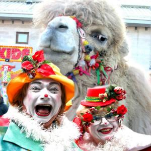 camels with clowns