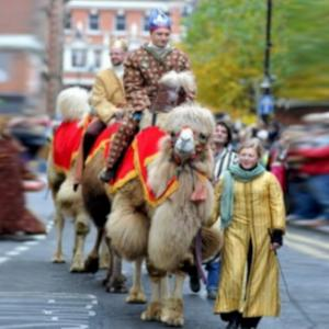 camels in Leicester