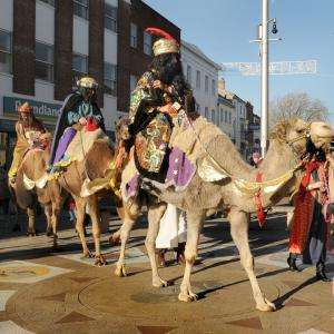 camels in town centre