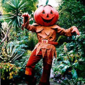 Mr Pumpkinhead