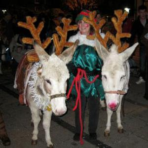 Donkeys deliver Santa